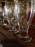 Rows of beer glasses Royalty Free Stock Image