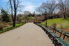 Rows of benches in Central-park stock photos