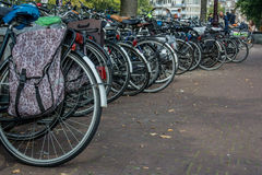 Rows of Bicycle Tires Stock Photography