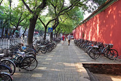 Rows of bicycles, Beijing, China Royalty Free Stock Images