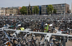 Rows with bikes Stock Photography