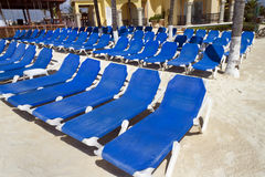 Rows of Blue Chairs. Rows of blue several lounge chairs on the beach Royalty Free Stock Photo