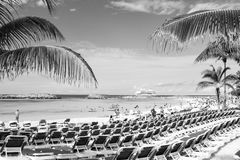 Rows of blue chairs on sea beach with white sand. Great stirrup cay, Bahamas - January 8, 2016: rows of blue lounge chairs on sea beach with white sand, green Royalty Free Stock Photography