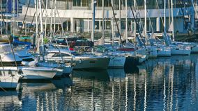 Rows of boats in marina in adriatic sea bay harbor in Pula, Croatia in summer stock video