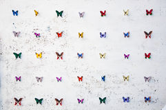 Rows of Butterflies Stock Image