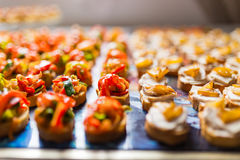 Rows of canapes Royalty Free Stock Images