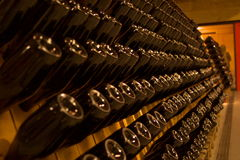 Rows of champagne bottles Royalty Free Stock Photos