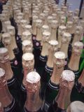 Rows of champagne bottles Stock Photos