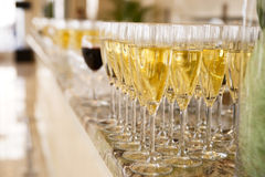 Rows of champagne flutes Royalty Free Stock Images