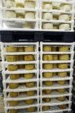 Rows of cheese Stock Photos