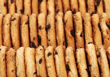 Rows of chocolate chip cookies Royalty Free Stock Photography