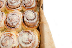 Rows of cinnamon buns Stock Images