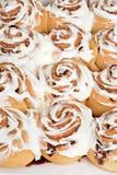 Rows of cinnamon buns Royalty Free Stock Photo