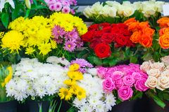 Rows of colorful bouquets in the flower shop. Background royalty free stock photography