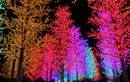 Rows of colorful LED trees decoration. Stock image of Rows of colorful LED trees decoration royalty free stock images