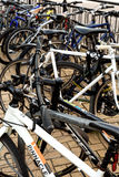 Rows of Commuter Bikes Royalty Free Stock Image