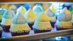 Rows of cupcakes Royalty Free Stock Photography