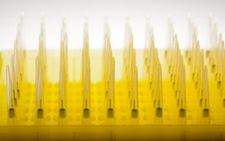 Rows of disposable laboratory dropper tips Royalty Free Stock Photos