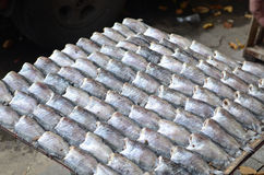 Rows of dry fish for sale Stock Photography