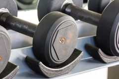 Rows of dumbbell Stock Image