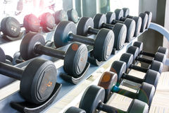 Rows of dumbbell Royalty Free Stock Photo