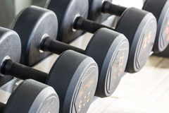 Rows of dumbbell Stock Photo