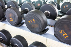Rows of dumbbell Stock Photos
