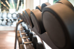 Rows Of Dumbbells In The Gym Stock Photos