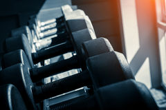 Rows of dumbbells in the gym with hign contrast and monochrome c Stock Photography