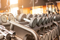 Rows of dumbbells in the gym. With hign contrast and monochrome color tone royalty free stock photography