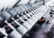 Rows of dumbbells in gym Stock Photo