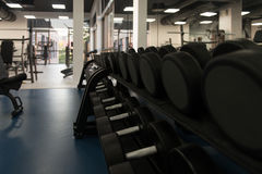 Rows Of Dumbbells In The Gym Stock Images