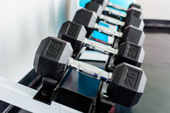 Rows of dumbbells Stock Image