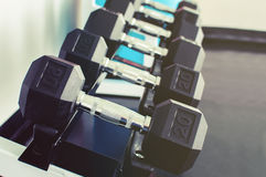 Rows of dumbbells on a rack Stock Image