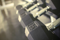 Rows of dumbbells on a rack. In a gym, Vintage style Royalty Free Stock Photo
