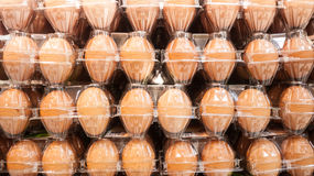 Rows of eggs Royalty Free Stock Photography