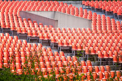 Rows of empty chair seats Stock Image