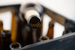 Rows of empty glass bottles Royalty Free Stock Photo