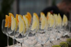 Rows of empty glasses prepared for reception Royalty Free Stock Image
