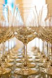 Rows of empty wine glasses. Royalty Free Stock Images