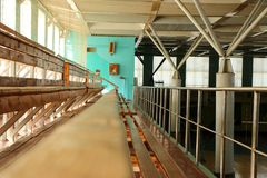 Rows of empty wooden benches in sporting hall. Tribune in gym for fans of matches with empty wooden seats Stock Images