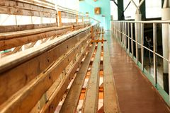 Rows of empty wooden benches in sporting hall. Tribune in gym for fans of matches with empty wooden seats Stock Photo