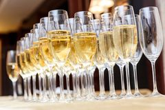Rows of full champagne or sparkling wine glasses. Royalty Free Stock Photography