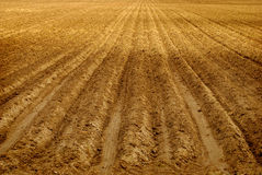 Rows of Furrows in Field Stock Photo