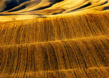 Rows of Furrows in Plowed Field Stock Photos