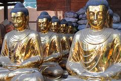 Rows of Golden Buddhas Stock Photography