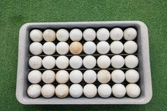 Rows of golf balls in tray on green, Koh Pha Ngan, Thailand Stock Photo