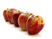 Rows of goodness. Health apples standing in a row Stock Photo