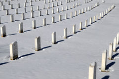 Rows of graves at Arlington Stock Photo