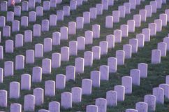 Rows of Gravestones, Arlington National Cemetery, Washington, D.C. Stock Photography